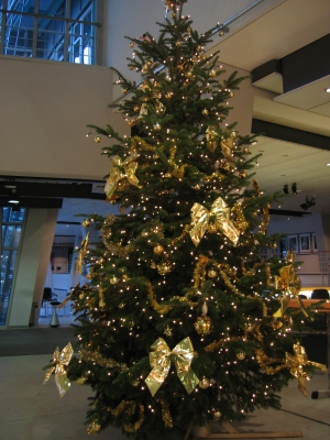 weihnachtsbaum mit aufbau in hamburg weihnachtsbaum. Black Bedroom Furniture Sets. Home Design Ideas